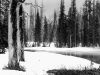 yellowstone-winter-copy