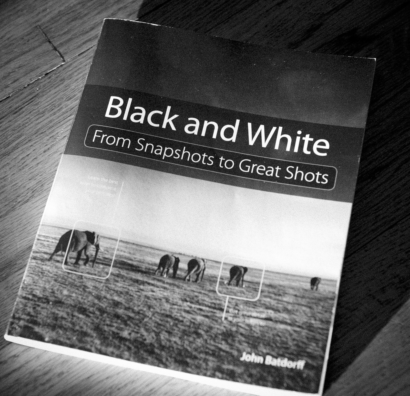 John Batdorff's Black and White: From Snapshots to Great Shots