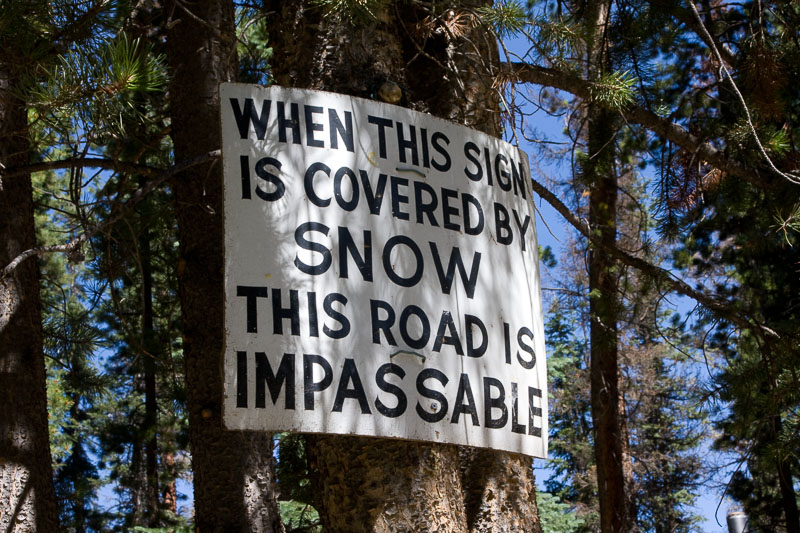 sign on the tree indicating snow levels